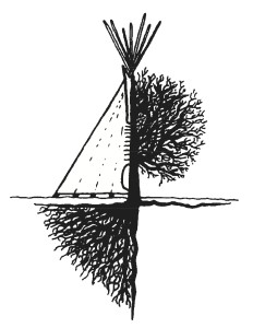 tipi_tree_image copy
